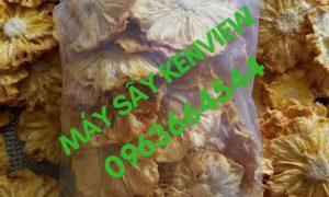Thơm sấy dẻo – Máy sấy trái cây, thực phẩm công nghiệp 0963664544