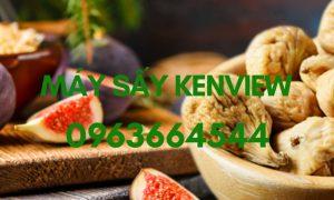 Sung sấy khô – Máy sấy sung công nghiệp 0963664544