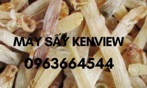 Sá sùng sấy khô – Máy sấy sá sùng công nghiệp 0963664544