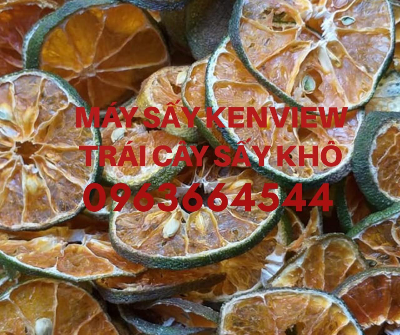 Máy sấy trái cây, hoa quả gia đình và công nghiệp 0963664544