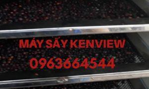 Tiêu sấy khô – Máy sấy tiêu – Máy sấy nông sản công nghiệp 0963664544