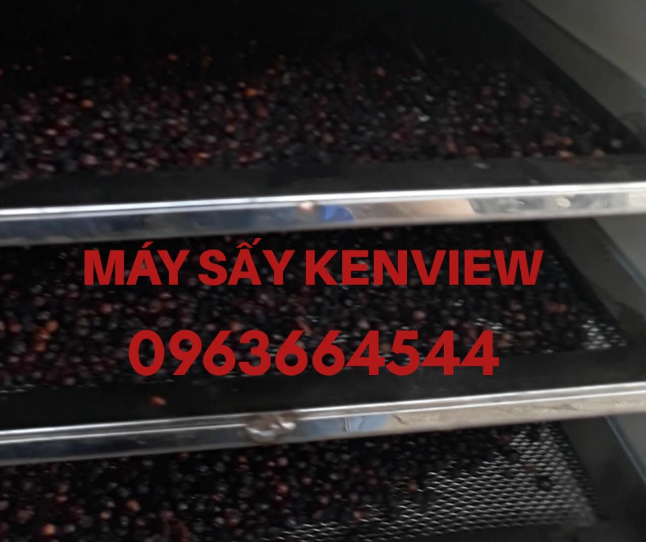 Tiêu sấy khô - Máy sấy tiêu - Máy sấy nông sản công nghiệp 0963664544