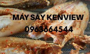 Máy sấy hải sản chuyên nghiệp, tôm khô, cá khô gia đình và công nghiệp giá rẻ