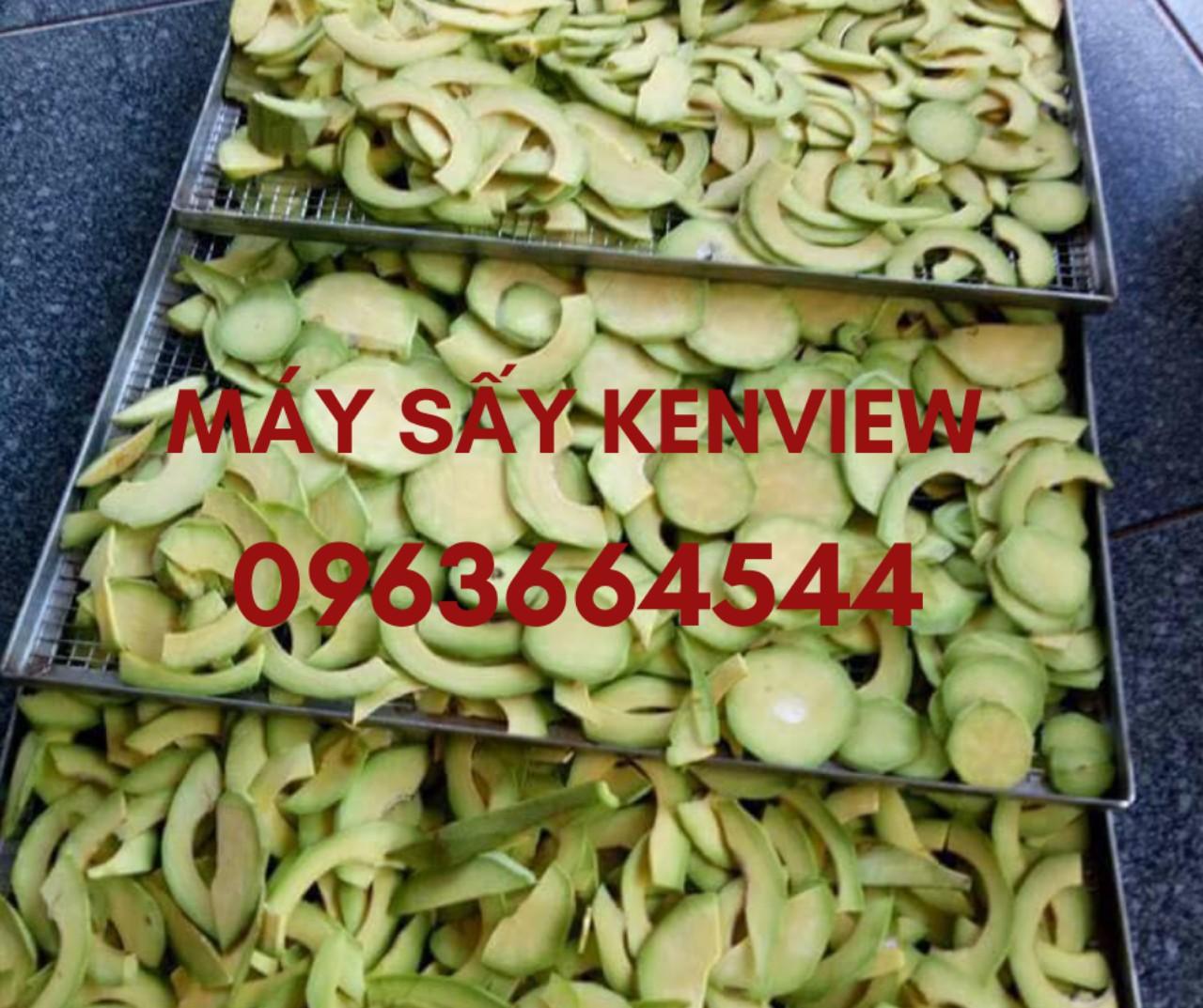 Bơ sấy - Tinh bột bơ - Máy sấy tinh bột bơ công nghiệp 0963664544