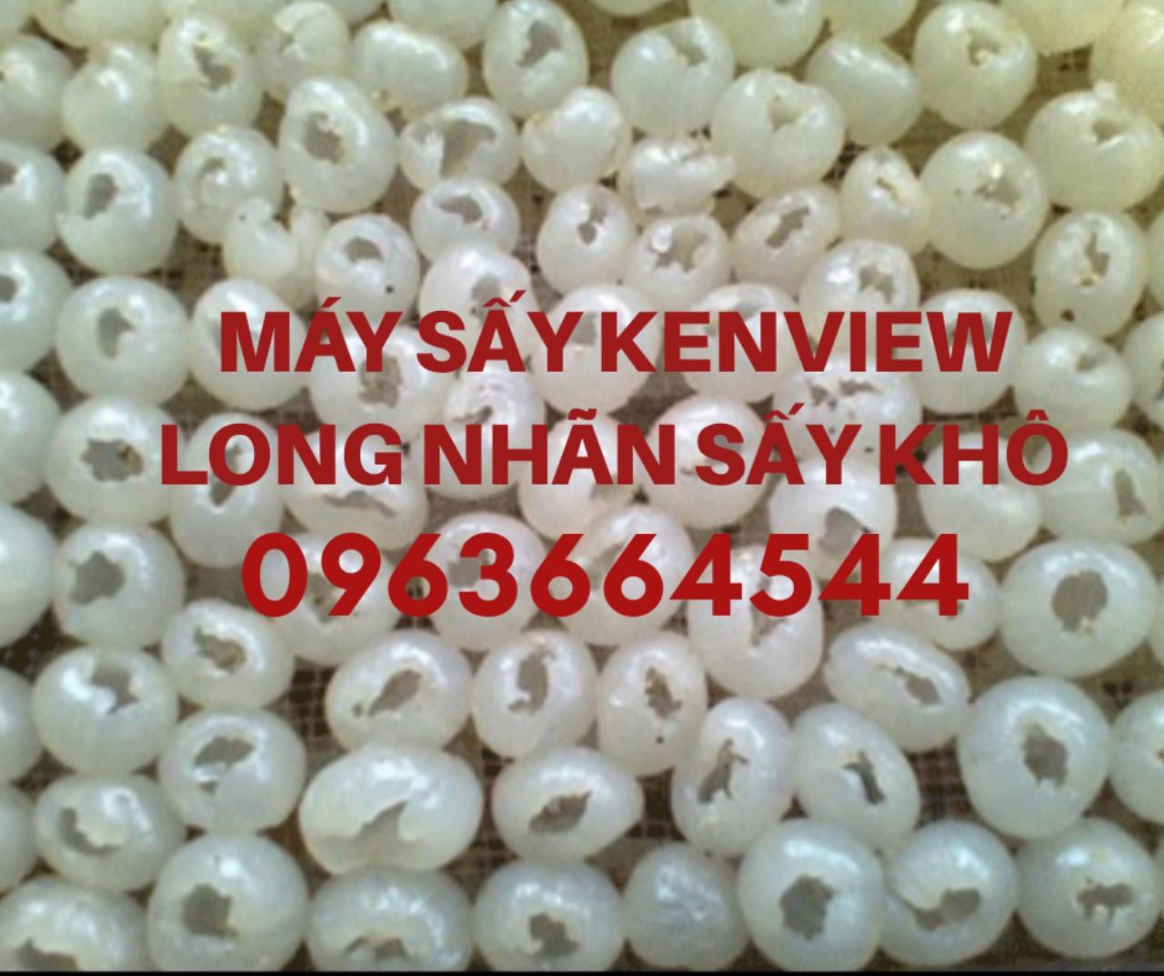 Long nhãn sấy khô - Máy sấy long nhãn công nghiệp 0963664544