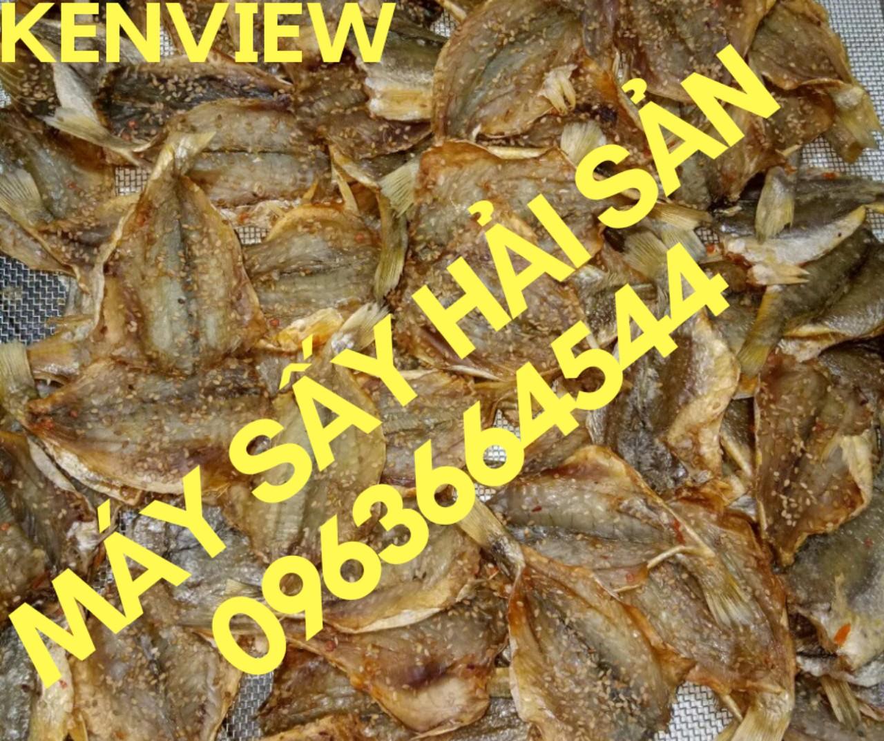 Máy sấy hải sản chuyên nghiệp, máy sấy cá khô, tôm khô, mực khô
