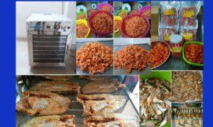 Máy sấy cá khô, tôm khô, máy sấy tôm cá giá rẻ 0963664544