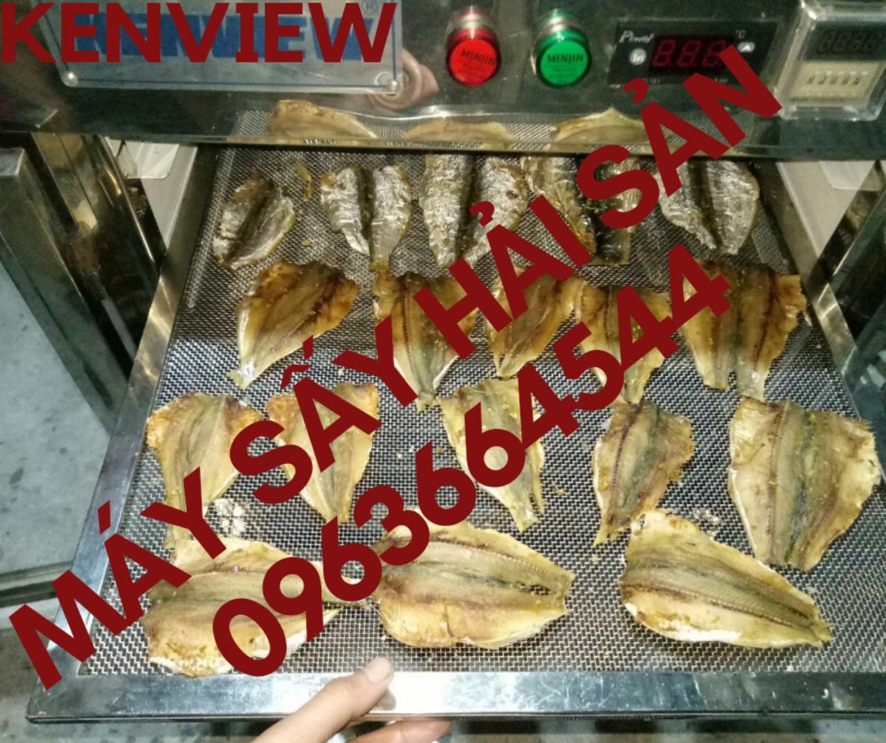 Máy sấy cá khô, tôm khô, máy sấy hải sản chuyên nghiệp 0963664544